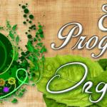 Tudo sobre escova progressiva orgânica