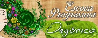 ESCOVA PROGRESSIVA ORGANICA BENEFICIOS BLOG